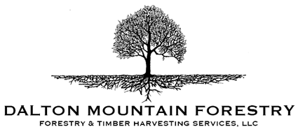 Dalton Mountain Forestry - Licensed NH and VT Forester, Bryan Comeau